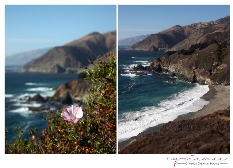 California-5