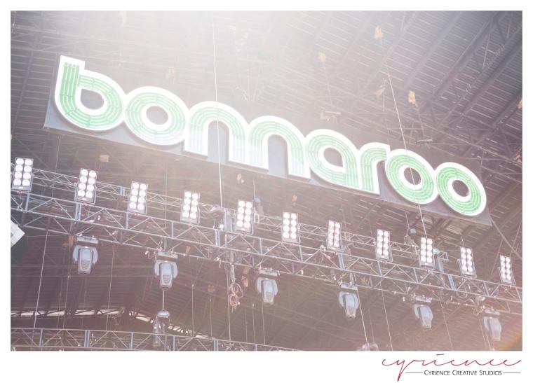 Bonnaroo2013-11