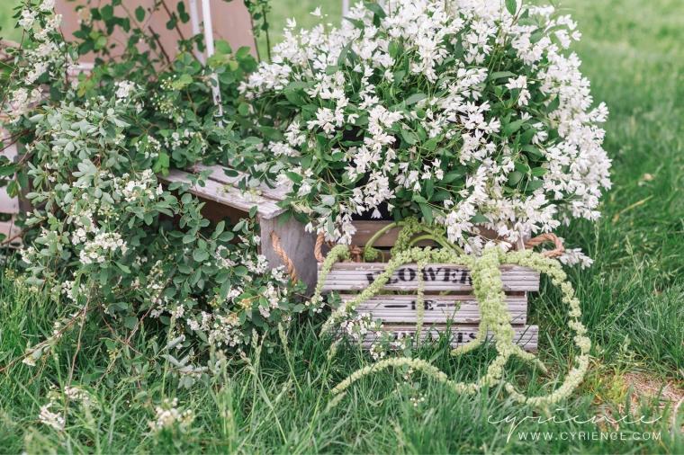 Cyrience_Lyndhurst_Castle_Wedding_Westchester_NewYork-45